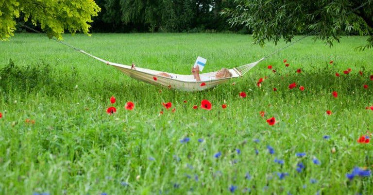 Var fjärde svensk läser mer på sommaren