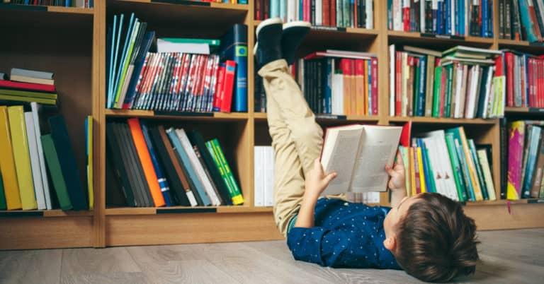 Regeringen: Ny kraftig höjning av biblioteksersättningen