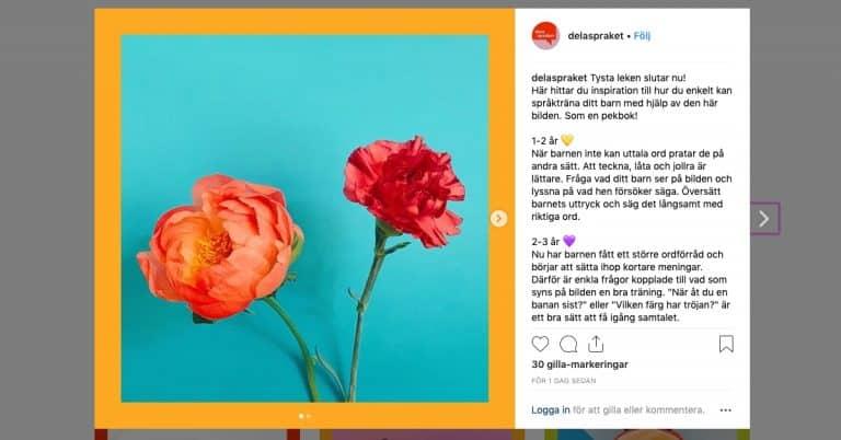 Region Halland inspirerar till språkträning med digital pekbok på Instagram