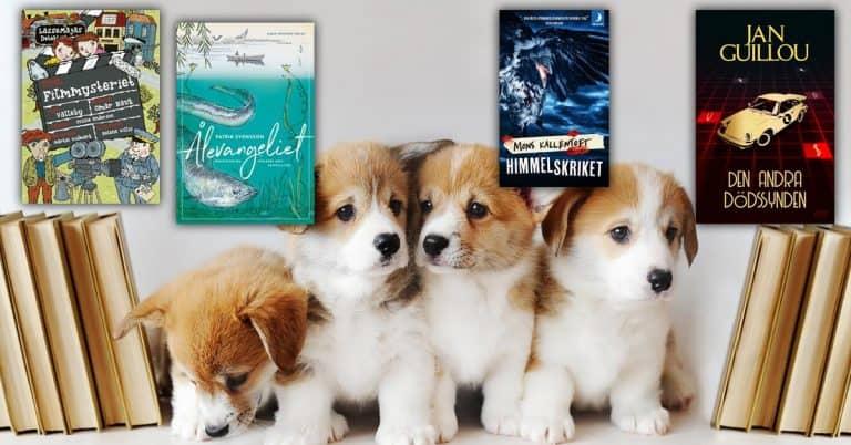 Topplista – vecka 37, 2019: De mest sålda böckerna i Sverige