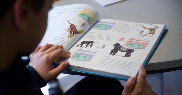 Få barn att läsa.