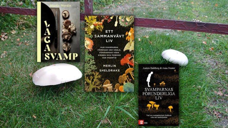Svamptrenden med alla böcker om svampar – bara en säsongsgrej?