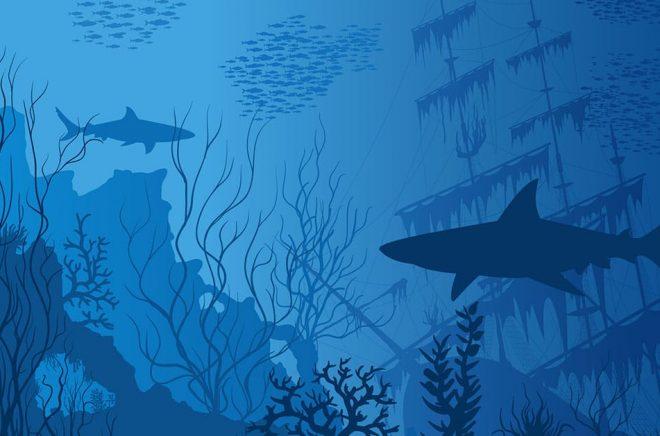 Den svenska ljudboksmarknaden som ett hajrev. Vem som är den största hajen av Storytel och Bonniers beror på vilket perspektiv du väljer. Klart är i alla fall att de allra flesta förlagen är de små fiskarna i stimmen som bara kan hålla sig undan när giganterna drabbar samman i förhandling. Illustration: iStock.