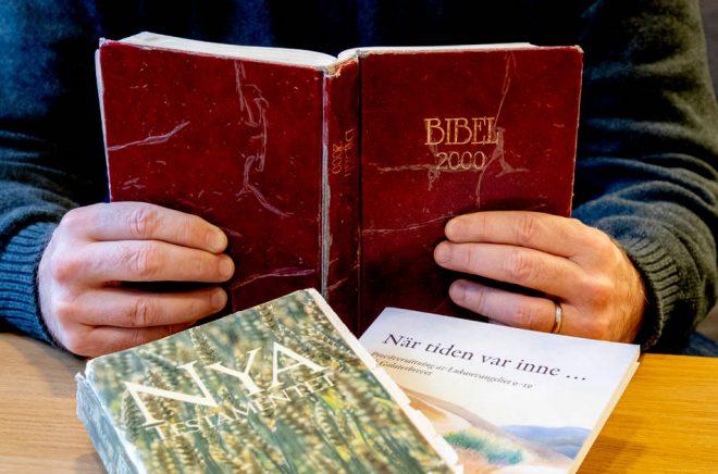 Bibel 2000, Nya testamentet 1981 och provöversättningen