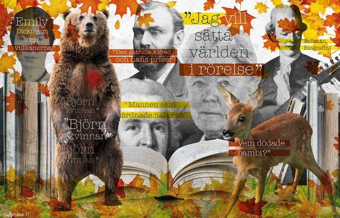 Bokhösten är ovanligt rik på svenska biografier. Bland andra Carl Michael Bellman, Carl von Linné och Selma Lagerlöf skildras i helfigur. Illustration: Ingela Landström/TT.