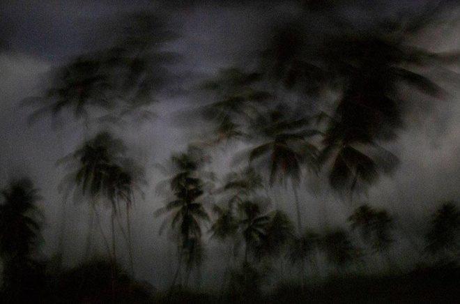 Berättelsen om sex pojkar som en juninatt 1965 kravlar i land på en öde ö i Stilla havet blir långfilm. Genrebild: Rodrigo Abd/TT/AP.