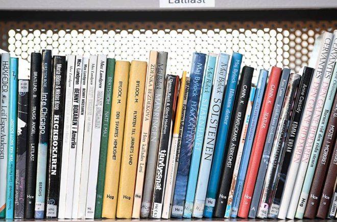 Skolbibliotekarier runt om i landet hade hoppats på en större satsning i budgeten för 2022. Arkivbild: Pontus Lundahl/TT.