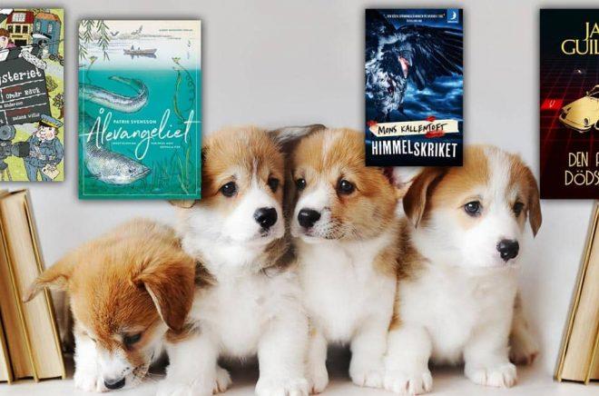 Fyra hundvalpar och fyra av mest sålda böckerna under vecka 37, 2019. Bakgrundsfoto: iStock.