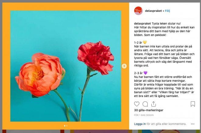 Skärmklipp från Instagramkontot Dela Språket. Genom kontot vill Region Halland skapa nya språkträningsvanor hos vuxna med småbarn.