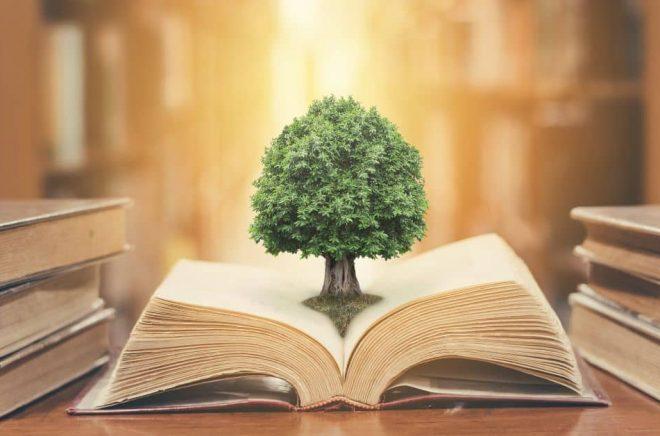 Genom Carbon Balanced Paper kan tryckerier och förlag klimatkompensera för utsläpp kopplade till papper. Foto: Istock