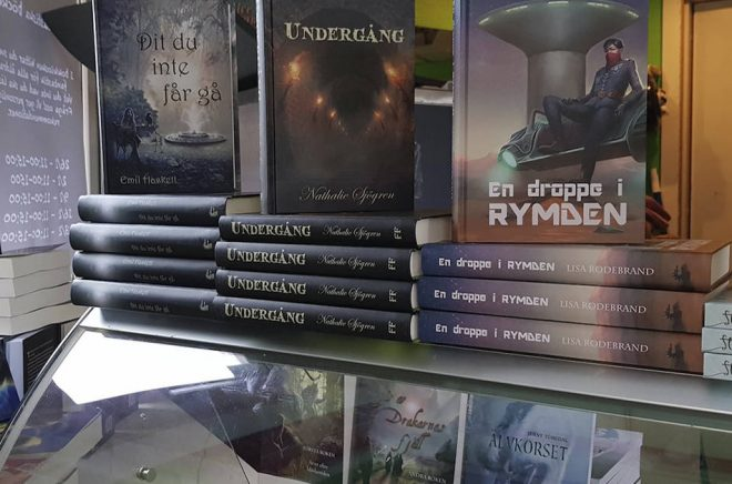 En frysbox full av böcker. Pop-up projektet Bokkiosken höjde mångas ögonbryn. Foto: Sofi Poulsen
