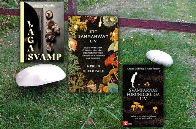 Bakgrundsbild: Ätbar eller dödlig? Överst, tre titlar ur höstens svamboksfauna. Foto och montage: Boktugg.