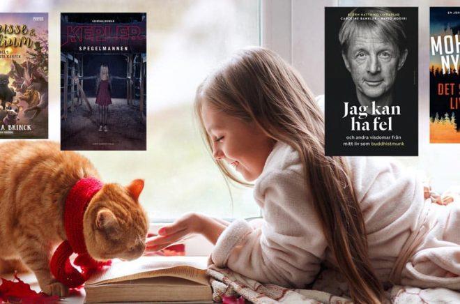 topplista böcker november 2020